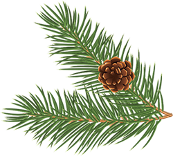 pine-left